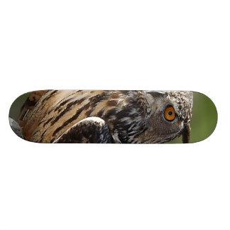 Stunning Eagle Owl with Orange Eyes Skateboard Deck