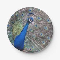 Stunning Full Vintage Peacock Paper Plate