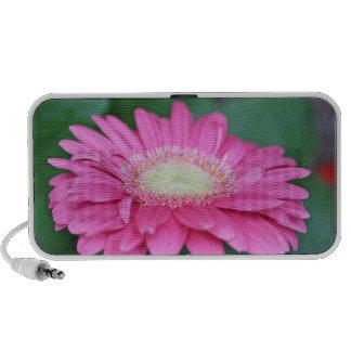 stunning gerbera flower speakers