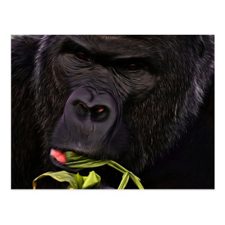 Stunning Gorilla Postcard