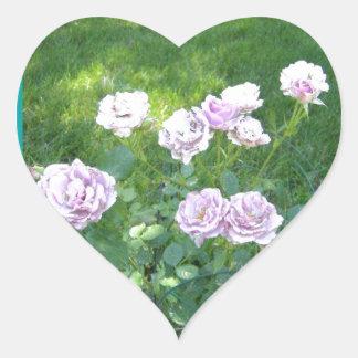 Stunning Lavendar Roses Heart Sticker