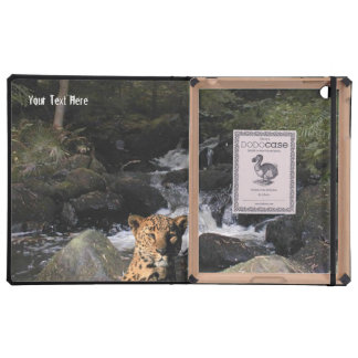 Stunning Leopard  Picturesque Waterfall Background iPad Covers