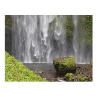 Stunning Oregon Waterfall Postcard