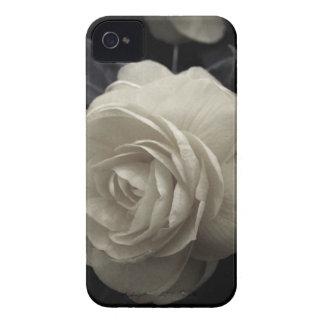 Stunning pale cream roses print Case-Mate iPhone 4 case