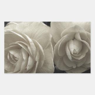 Stunning pale cream roses print rectangular sticker