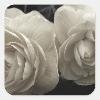 Stunning pale cream roses print square sticker