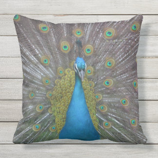 Stunning Peacock Outdoor Pillow