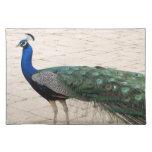 Stunning Peacock Place Mat