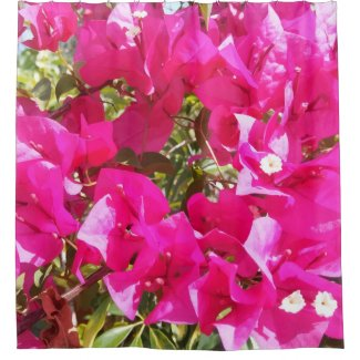 Pink Bougainvillea Print Shower Curtain