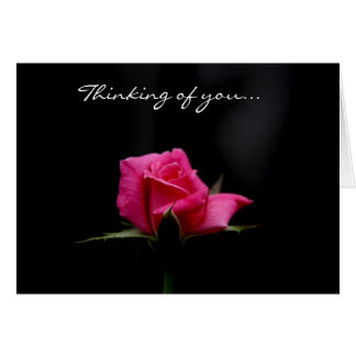 Stunning Pink Rose on Black, Thinking of you Card
