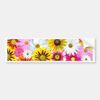 Stunning pink yellow flowers pattern accessories bumper sticker