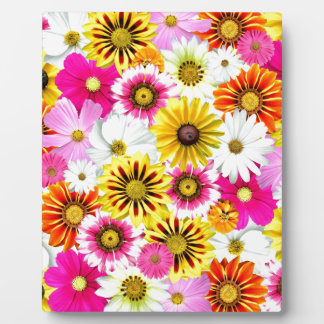 Stunning pink yellow flowers pattern accessories plaques