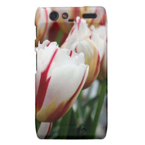 Stunning red and white tulip print droid RAZR cover