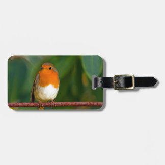 Stunning red Robin bird photo accessories, Xmas Bag Tag