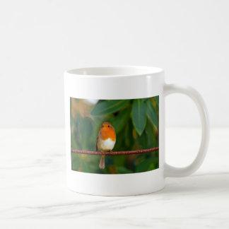Stunning red Robin bird photo accessories Xmas Coffee Mug