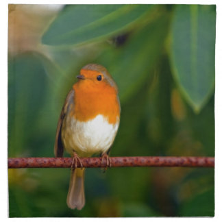 Stunning red Robin bird photo accessories, Xmas Cloth Napkins