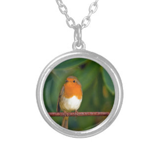 Stunning red Robin bird photo accessories, Xmas Personalized Necklace
