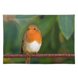 Stunning red Robin bird photo accessories, Xmas Placemats