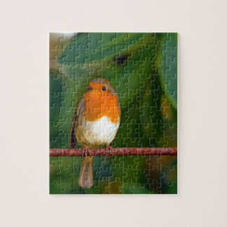 Stunning red Robin bird photo accessories, Xmas Puzzle