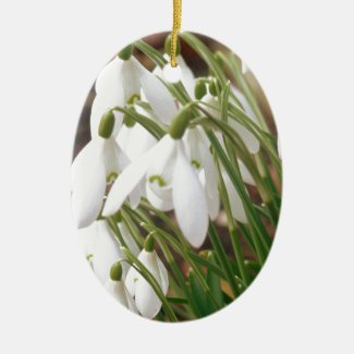 Stunning Snowdrops Ceramic Ornament