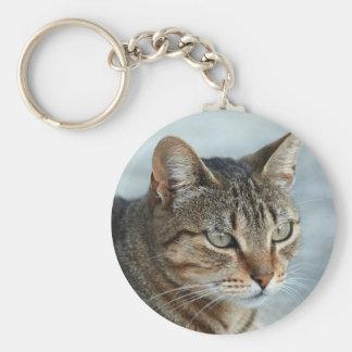 Stunning Tabby Cat Close Up Portrait Basic Round Button Keychain
