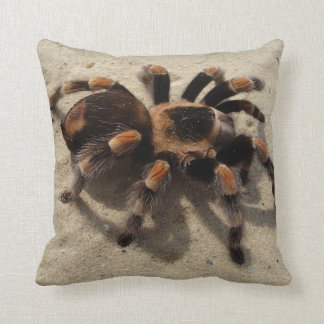 Stunning Tarantula Photos  Jumping Bird, Red Knee Throw Pillows
