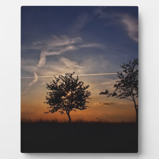 Stunning Trees, sunset nature scenery photo prints Display Plaque