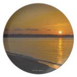 Stunning Tropical Sunset Dinner Plate