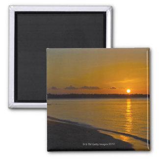 Stunning Tropical Sunset Magnet