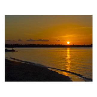 Stunning Tropical Sunset Postcard