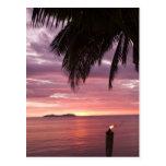 Stunning tropical sunset shinging through postcard