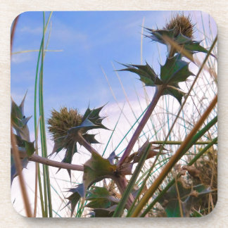 Stunning Unique Eye Catching Thistle Coaster