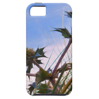 Stunning Unique Eye Catching Thistle iPhone SE/5/5s Case