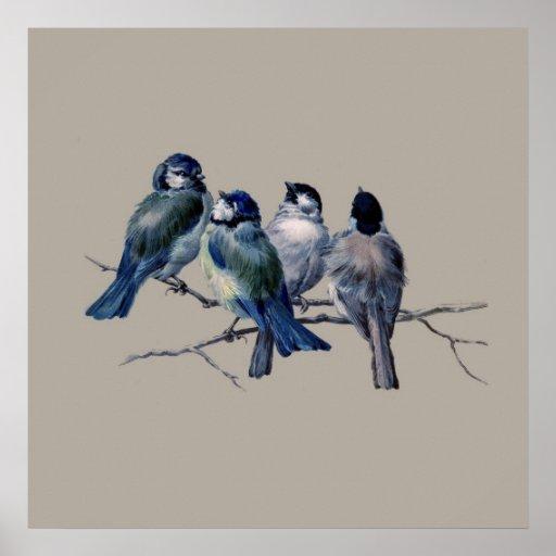 Stunning Vintage Art Blue Birds on branch x 4 Gift Poster