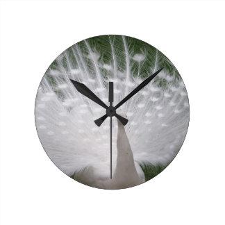 Stunning white Peacock ( Peafowl) full plume Wall Clock