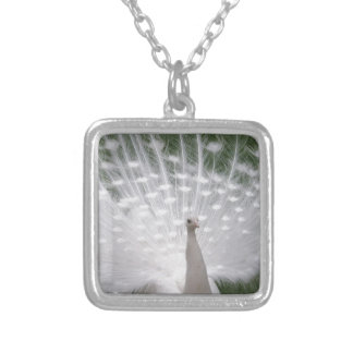 Stunning white Peacock ( Peafowl) full plume Personalised Necklace