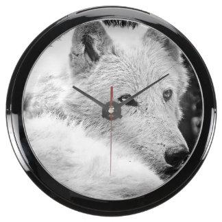 Stunning White Wolf Aquarium Clocks