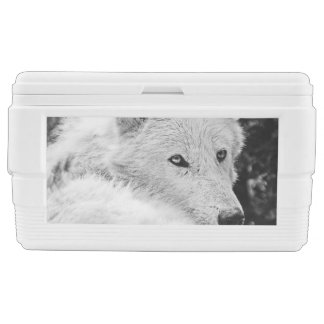 Stunning White Wolf Chest Cooler