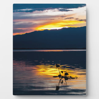 Stunning yellow sky, blue landscape, photo skies display plaque