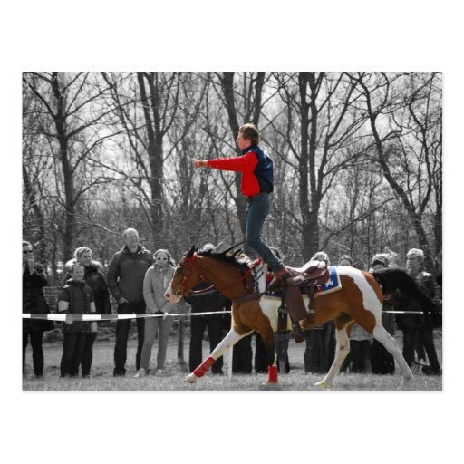 Stunt Riding Post Cards