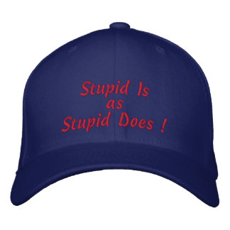 Stupid Is, as, Stupid Does ! Embroidered Baseball Cap