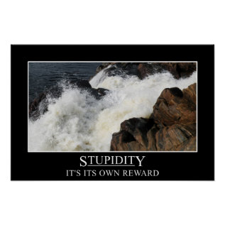 Stupidity Is Its Own Reward (s) Poster at Zazzle