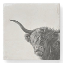 Sturdy highland cow in monochrome stone coaster