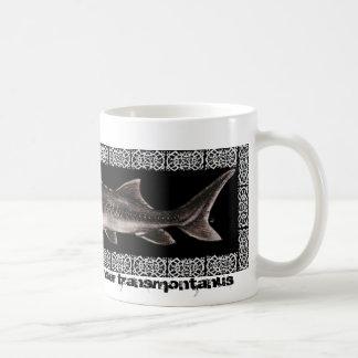 Sturgeon Mug - White Sturgeon