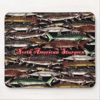 Sturgeon of North America Mouse Pad