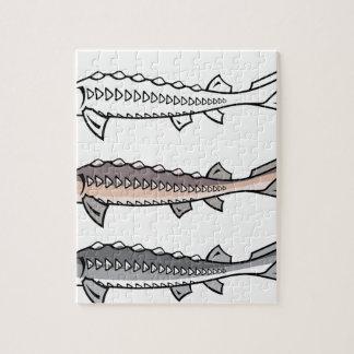 Sturgeon rare fish jigsaw puzzle