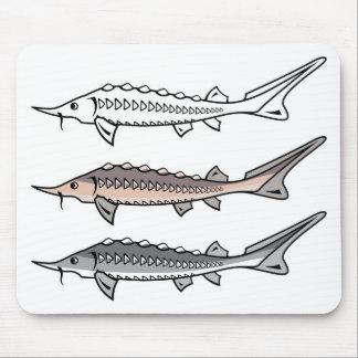 Sturgeon rare fish mouse pad