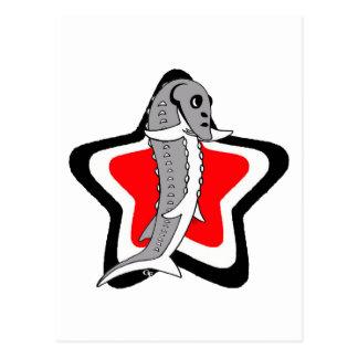 Sturgy-Star-Gray-BlackWhiteRed Post Card