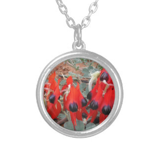 sturt desert pea silver plated necklace