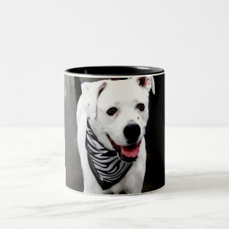 Stylin Dog Two-Tone Coffee Mug